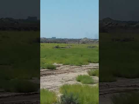 جانب من تدريب ابطال الحشد الشعبي اللواء الاول لواء محمد الجواد