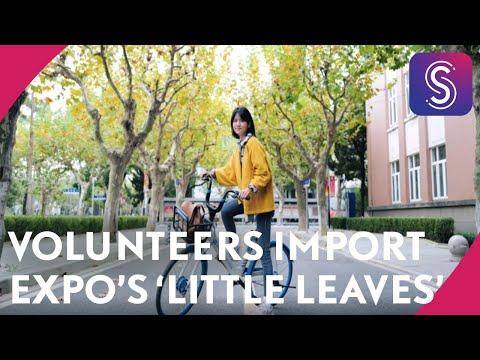 Volunteers import expo's 'little leaves'