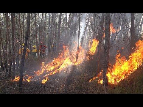 البرتغال: طريقة التعامل مع زيادة خطر حرائق الغابات  - نشر قبل 54 دقيقة
