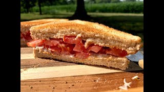 toasted-tomato-sandwich-you-suck-at-cooking-episode-79