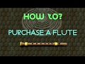 How to purchase a flute