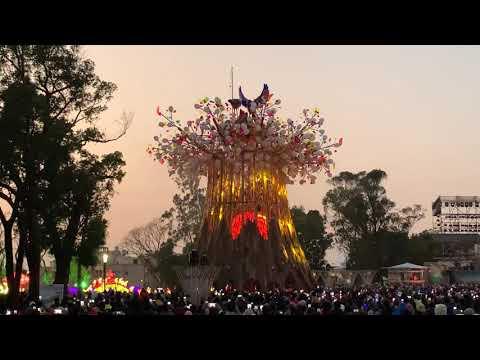 2020台灣燈會 森生守護 光之樹