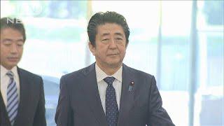 「桜を見る会」で改憲議論は停滞 業を煮やす総理(19/11/21)