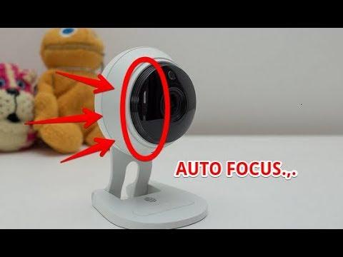 UNIQUE hive camera footage