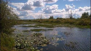 Рыбалка и охота на Алтае, обзор наших озер