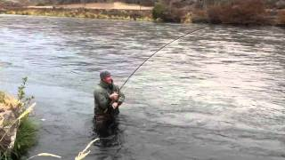 fly fishing the deschutes river for steelhead