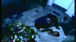 Watch music video: Don Omar - Luna