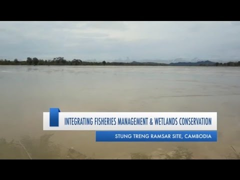 Integrating fisheries management and wetland conservation, Stung Treng Ramsar site, Cambodia