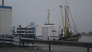 Ein Regentag am Außenhafen von Hooksiel