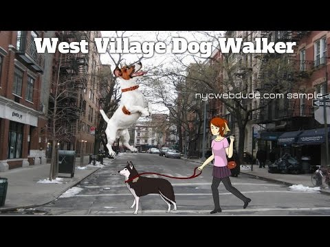 West Village Dog Walker - Video Marketing New York - NYC Web Dude
