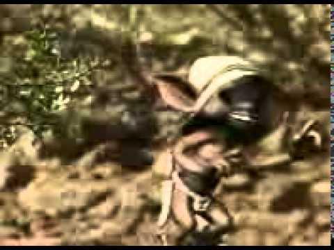 La viborita de los peques original youtube - Compritas para los peques ...