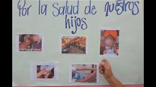 Heces de murciélagos, ratones y palomas infestaron colegio en Bolívar