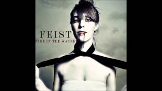 Fire In The Water Feist