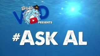 #AskAl: Do Fish Sleep? Do Fish Hear or Feel Sounds? Can Fish See Color?