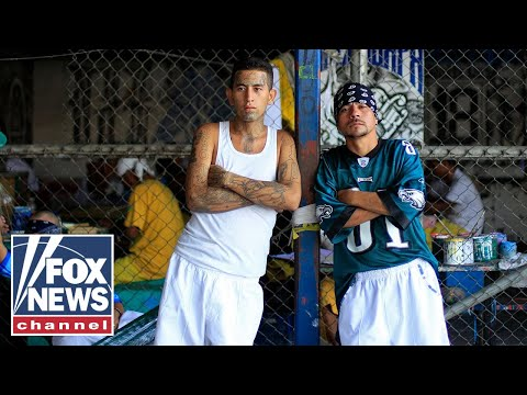 MS-13 'Amercanizing' With Female Members
