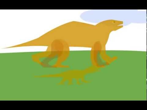 the Evolution Flash Animation