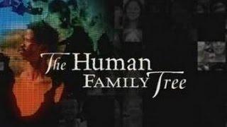 The Human Family Tree HD