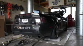 Flame Shooting 2003 Mustang Cobra   Pulled At Smokey