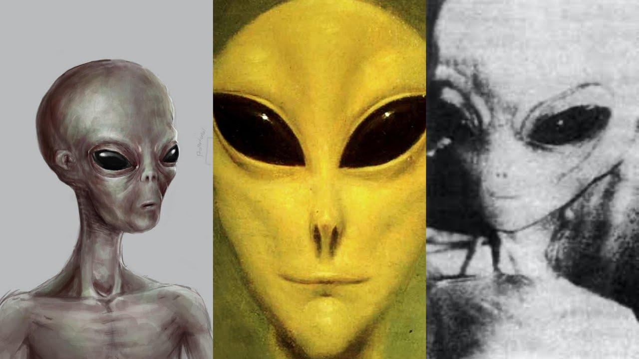 PRIMICIA MUNDIAL TOP SECRET: Existen 3 Tipos De Extraterrestres Grises