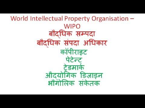 World Intellectual Property Organisation - WIPO , विश्व बौद्धिक सम्पदा संगठन