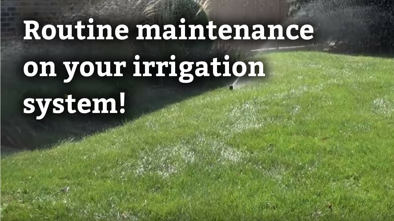 Irrigation Sprinkler System Maintenance Expert Lawn Care Tips