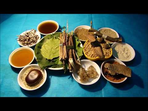 Tribal Herbal Medicines for Cancer Prevention and Cure by Pankaj Oudhia-1115