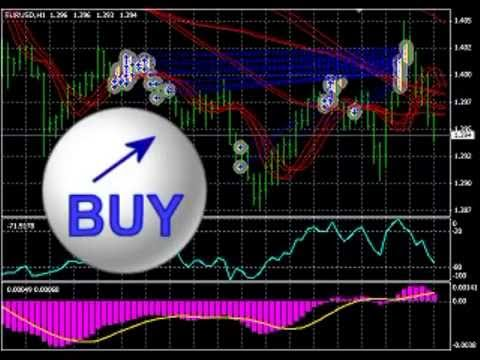 $10 million from just $500 - World's most AMAZING Forex Trading Robot. - YouTube