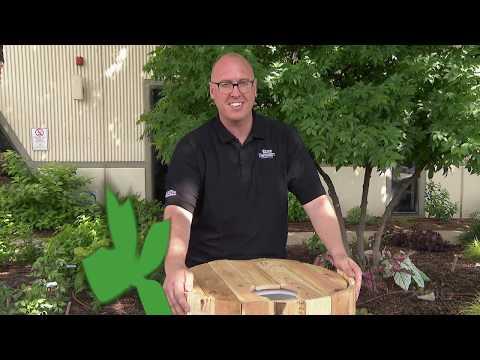 Paint & Decorate Homemade Rain Barrels  Daniel Cunningham Central Texas Gardener