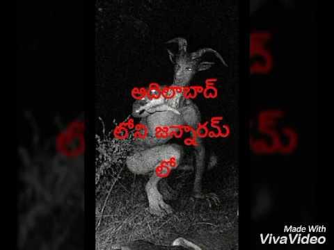WWW.vinthaprapancham.movie.com