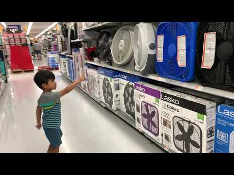 collections-of-fan-at-walmart,-toddler-shopping-for-collection-of-fans