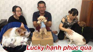 Lucky đã có Mẹ nuôi Lu¢ky hiện nguyên hình Siêu Quậy