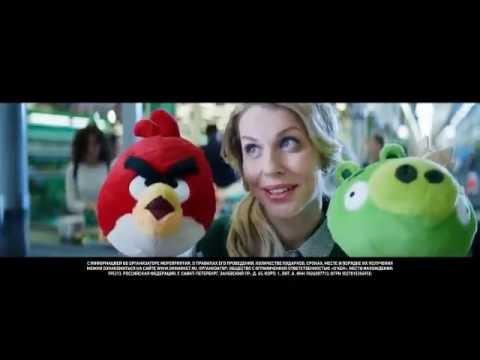 ОКЕЙ: в школу с Angry Birds (2016)