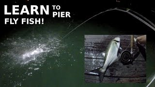 Learn SALTWATER Pier Fly Fishing & THOUGHTS on a HOT Summer Night