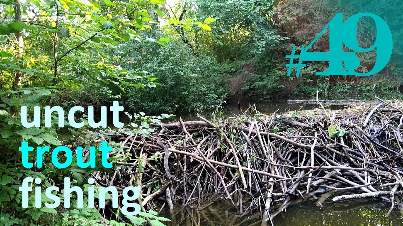 Reminiscing | Uncut Fishing #49