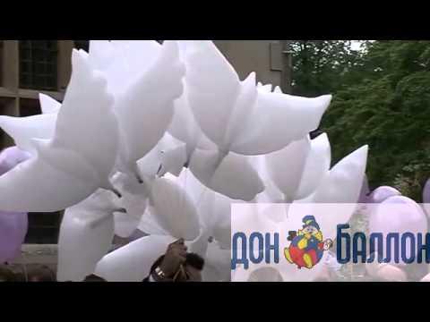 Интернет-магазин «сибшар» предлагает купить воздушные шары и сопутствующие товары по выгодным ценам. Гарантируем оперативную обработку и отправку заказа. Осуществляем доставку по россии.