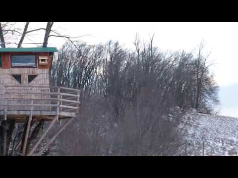 Strong Winds Testing The Treehouse