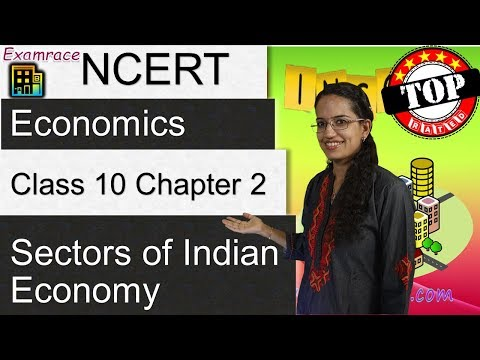 NCERT Class 10 Economics Chapter 2: Sectors of Indian Economy