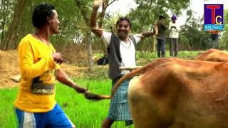 छत्तीसगढ़ी गीत---AHNDA HOGE RANI-//-AGAR ANAND  -आगर आनंद//HD VIDEO SONG 2018