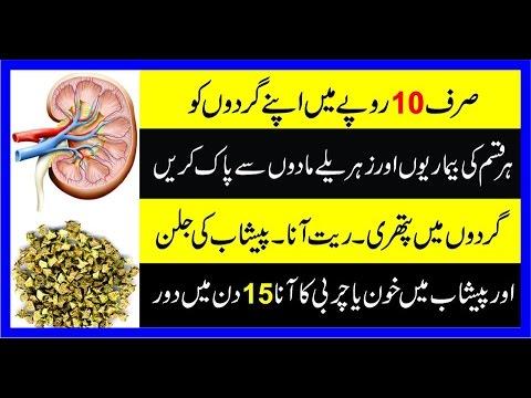 Kidney Ki Safai Ka Asan Totka||Gurday KI Pathri||Peshab jal Kar Ana||Gurday Ki Safai