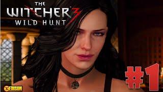 The Witcher 3 Wild Hunt - Прохождение - Часть 1 - Начало (Gameplay, ПК 60fps, 1080hd)