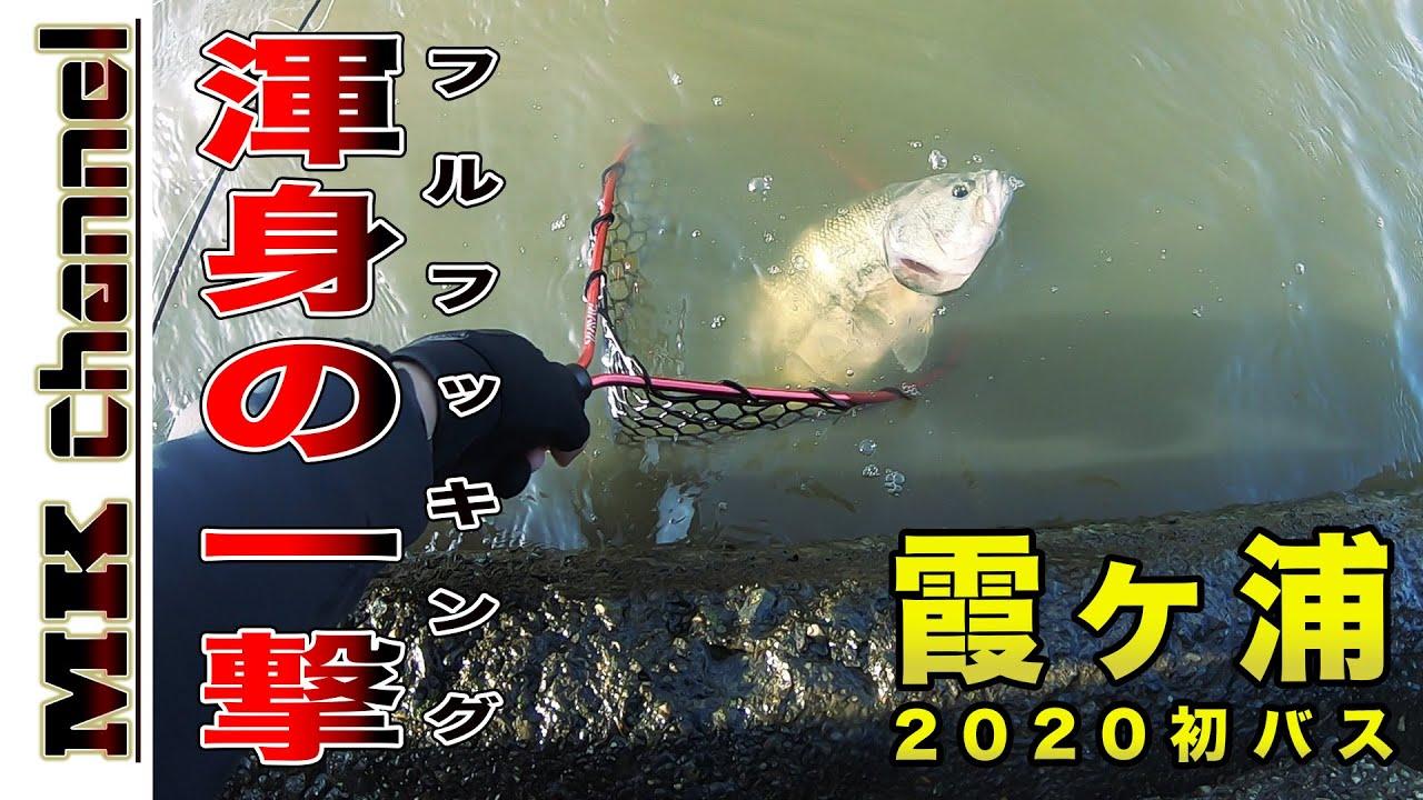 2020 釣り 霞ヶ浦 バス