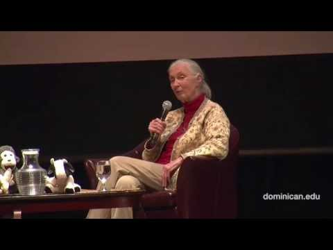 Jane Goodall in conversation with Gail Hudson and Elaine Petrocelli