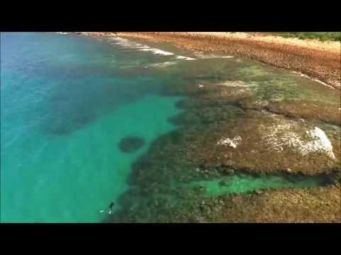 Aerial Footage of Orpheus Island - Windward Side