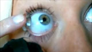 How to put in CONTACTS!