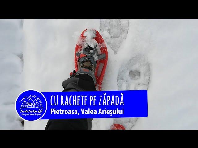 Pietroasa albă ... cu rachete pe zăpadă