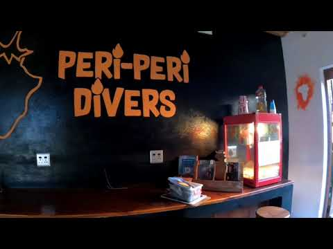 Vlog 8 : A walk through Peri Peri Divers, Tofo Mozambique