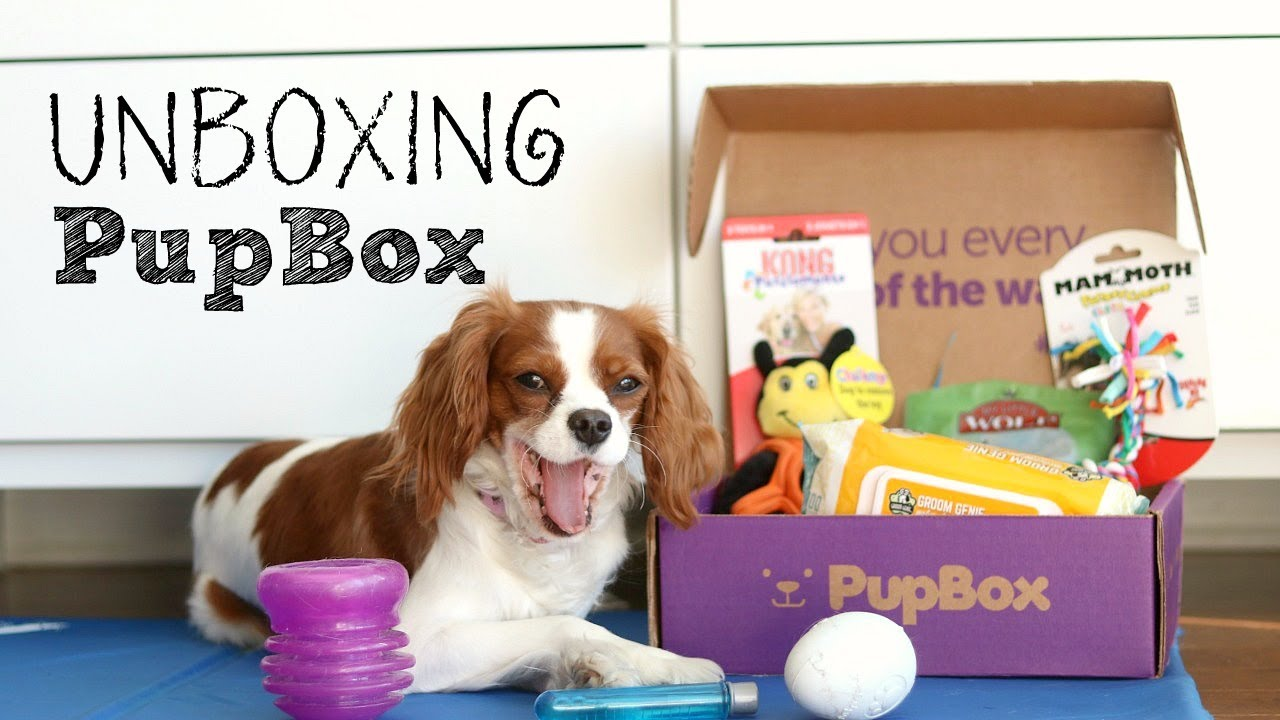Image result for PupBox Subscription Box