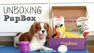 UNBOXING April Pupbox | Review Subscription Box for Dogs | Herky & Milton thumbnail