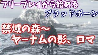 【Bloodborne】フリープレイから始める、ブラッドボーン中盤の詰みポイント攻略解説4【禁域の森、ヤーナムの影~ロマ】 thumbnail