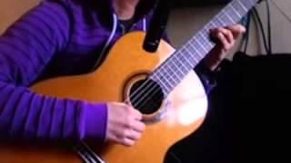 Chopin- Raindrop Prelude